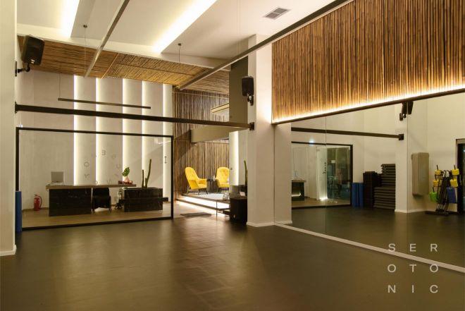 SEROTONIC Premium Fitness Concept - Gallery 2