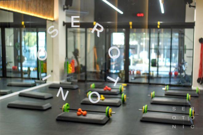 SEROTONIC Premium Fitness Concept - Gallery 4